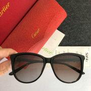 Cartier AAA+ Sunglasses #99897758