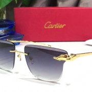 Cartier AAA+ Sunglasses #99897767