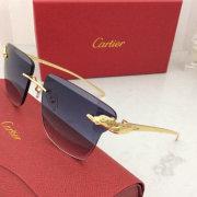 Cartier AAA+ Sunglasses #99897768