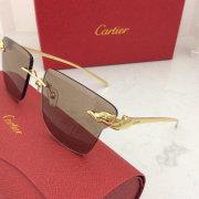 Cartier AAA+ Sunglasses #99897769